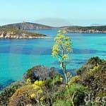 sardinia-beaches-tuerredda
