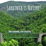 sardinia-beaches-cheap-holidays-nature