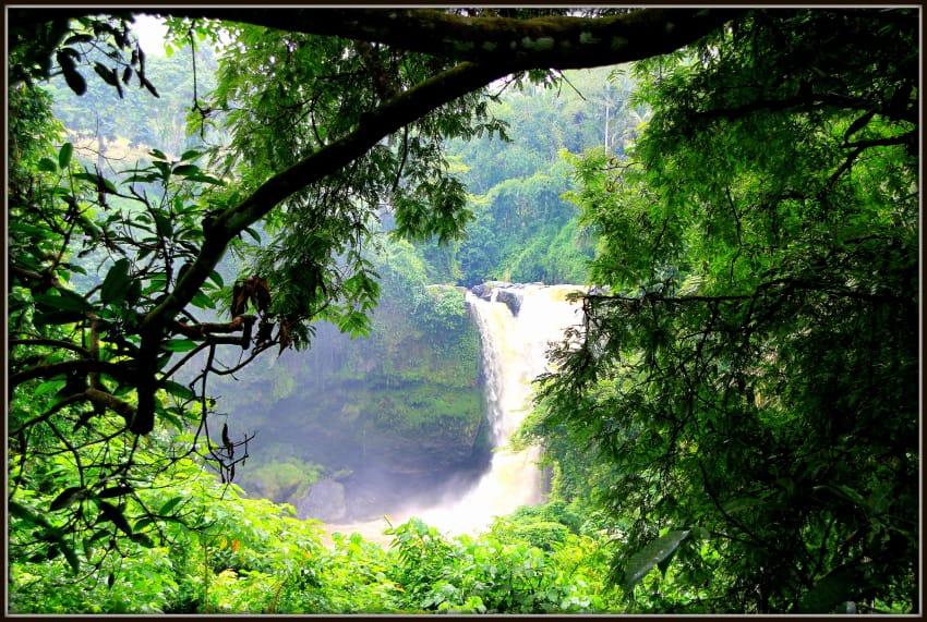 Waterfall Ubud