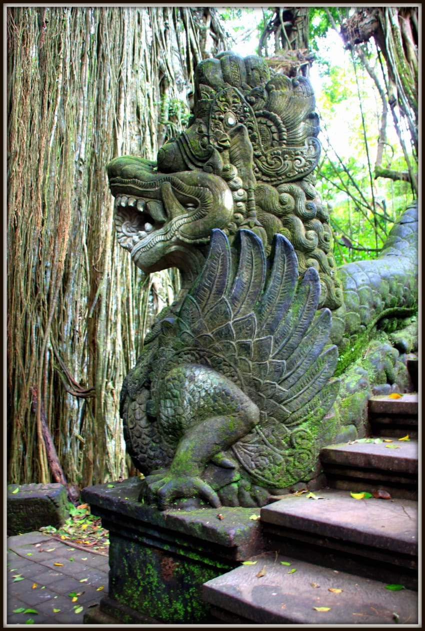 Dragon at monkey forest