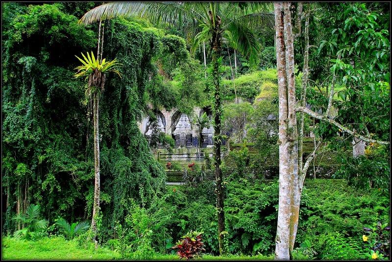 temples indonesia, ubud, bali, jungle temples