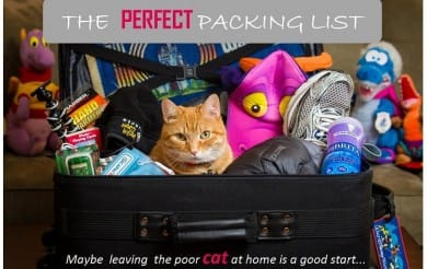 Travel Packing List: What is really necessary for a RTW trip?