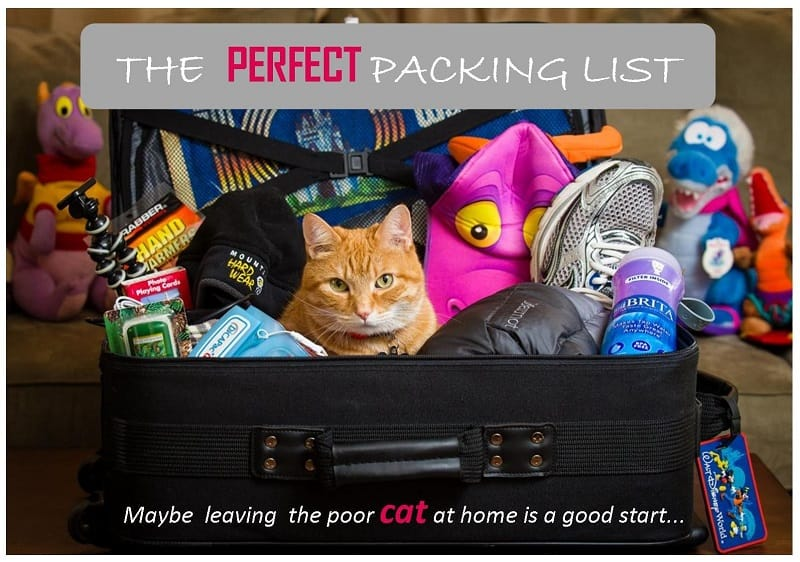 perfect packing list for a long trip, perfect packing list for a girl, what to put in the backpack for a long trip, perfect backpack for a rtw trip, how to make the perfect packing list for a trip