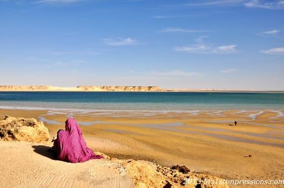 Sahara impressions