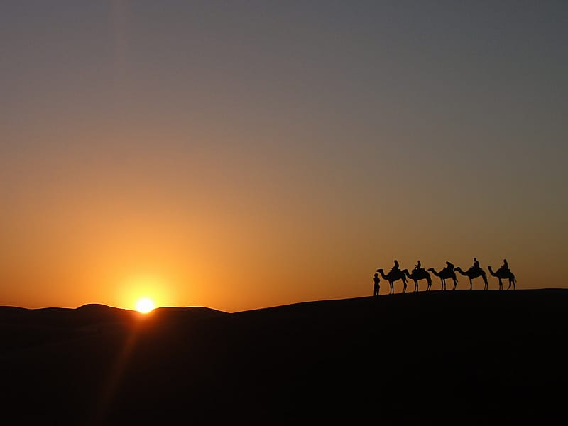 A beautiful shot of the Sahara desert by Jaime, Jaime Davila, breakawaybackpaker, jaime davila interviews, popular travel bloggers, Sahara desert beautiful pictures, sahara desert sunset, sahara desert camels, clelia mattana, keep calm and travel