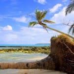 GUYAM-ISLAND-SIARGAO