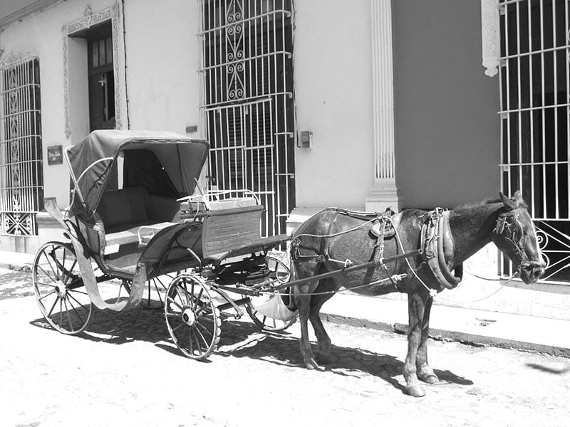 black and white carriage in cuba