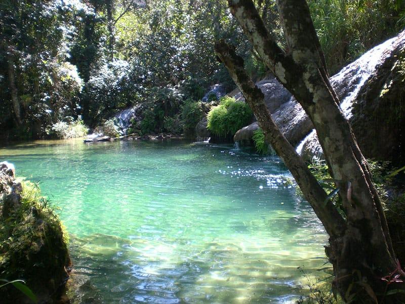 CUBA-spring-waters-forest-cuba