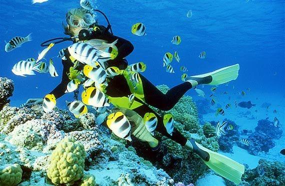 scuba_diving_koh-tao_thailand