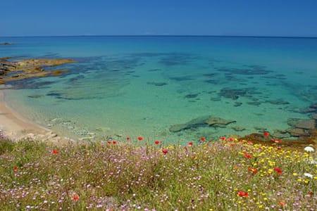 lu-bagnu-beach-best-beaches-near-castelsardo-sardinia-holidays