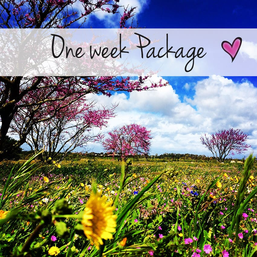 alghero_activities_one_week_package