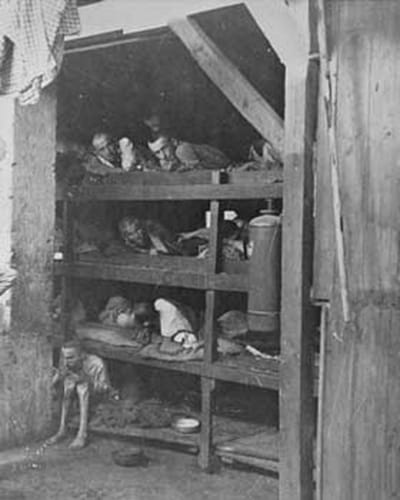 auschwitz_prisoners_ss_photographs_of_the_holocaust_birkenau