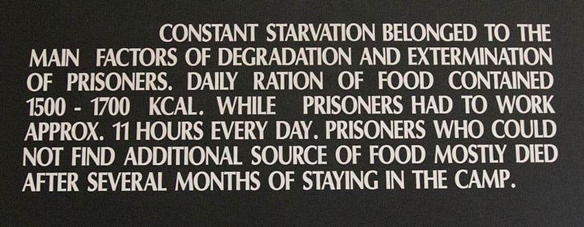 aushwitz-starvation-panel