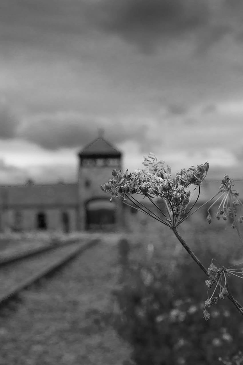 visit_to_Auschwitz_Birkenau_concentration_Camps_Poland_black_and_white_picture