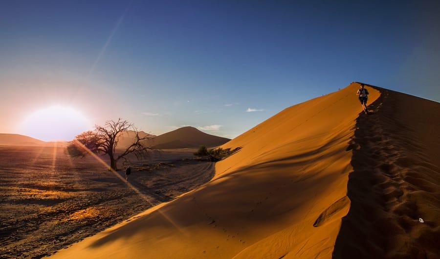 dune-modifica