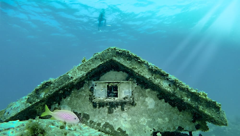 CANCUN-UNDERWATER-MUSEUM-SCULPURES-HOUSE-coral-reef