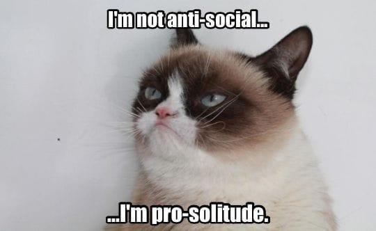 grumpy-cat_antisocial_meme
