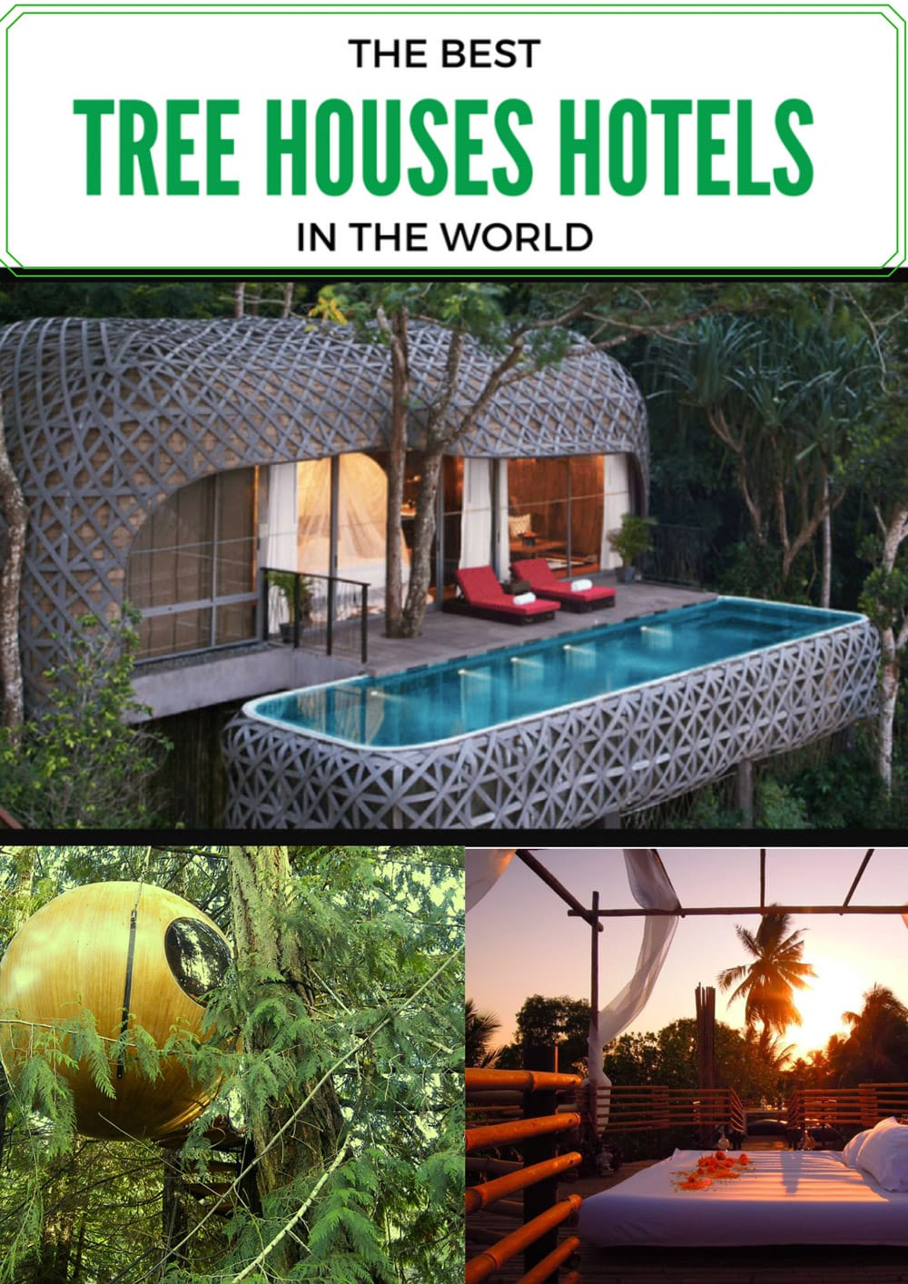 Best-top_tree_houses-hotels_In_the_world_collage