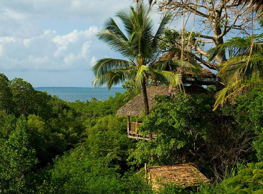 Tree_houses_hotels_Chole-Mjini-Lodge_Tanzania