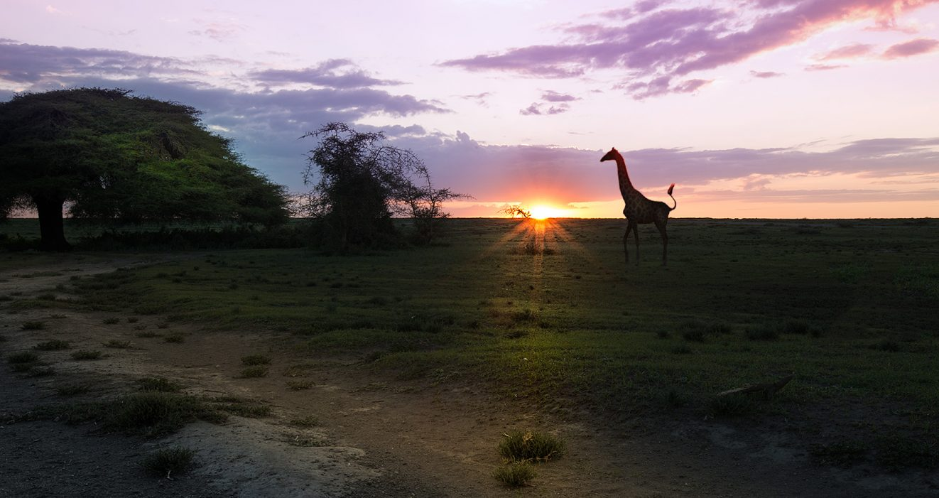 TANZANIA-TRAVEL-TIPS-ONE-WEEK-THINGS-TO-SEE-