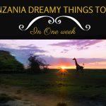 Tanzania-guida-cose-da-fare-e-vedere-in-una-settimana
