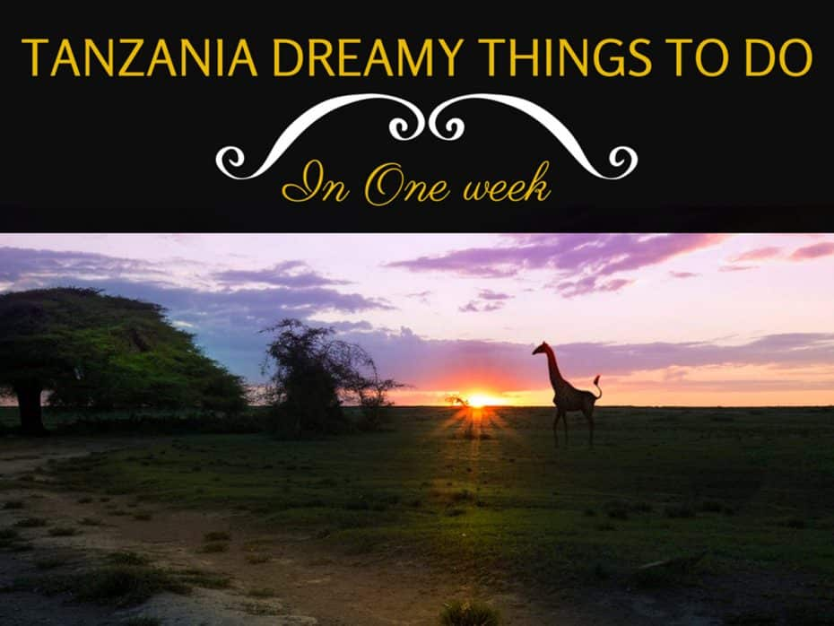 Tanzania-guide-things-to-do-and-see-in-one-week
