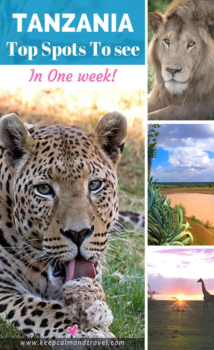 Tanzania-in-one-week-things-to-see