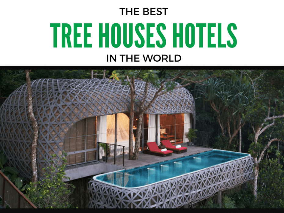 best_tree_houses_in_the_world 1