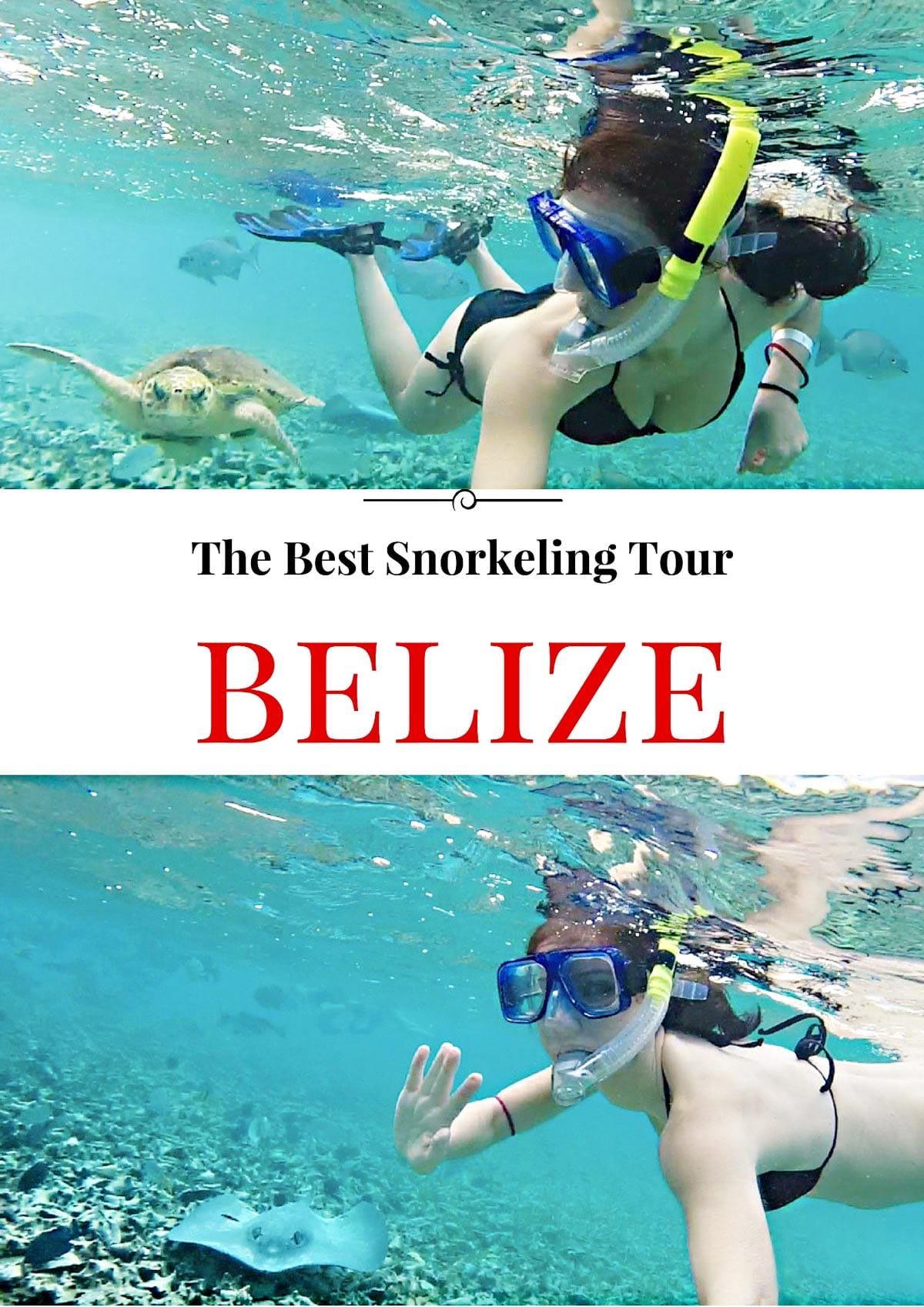Pinterest_Best_Snorkeling_tours_in_Belize_San-Pedro