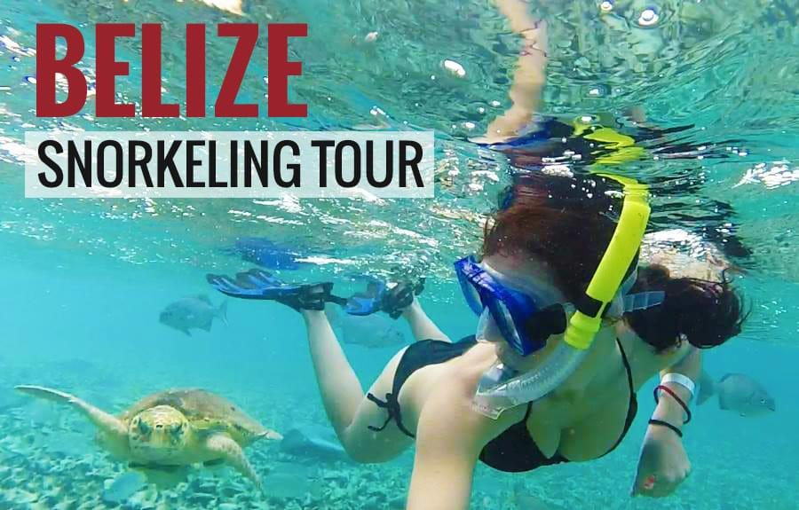 belize_best_snorkeling_tours_turtles_manta_rays_sharks
