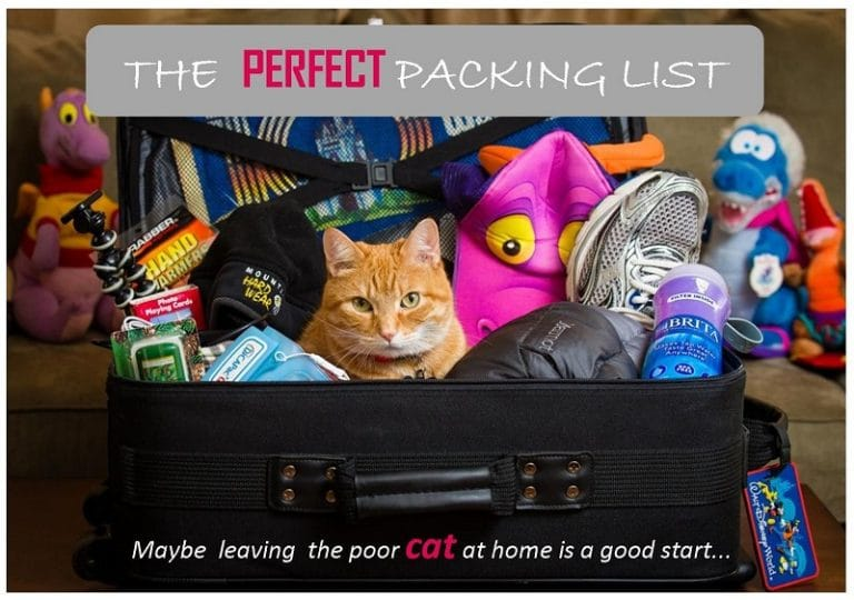 packing-list_necessary_items