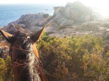 sardinia-things-to-do-near-nora-ruins-south-sardinia-horse-riding-beach