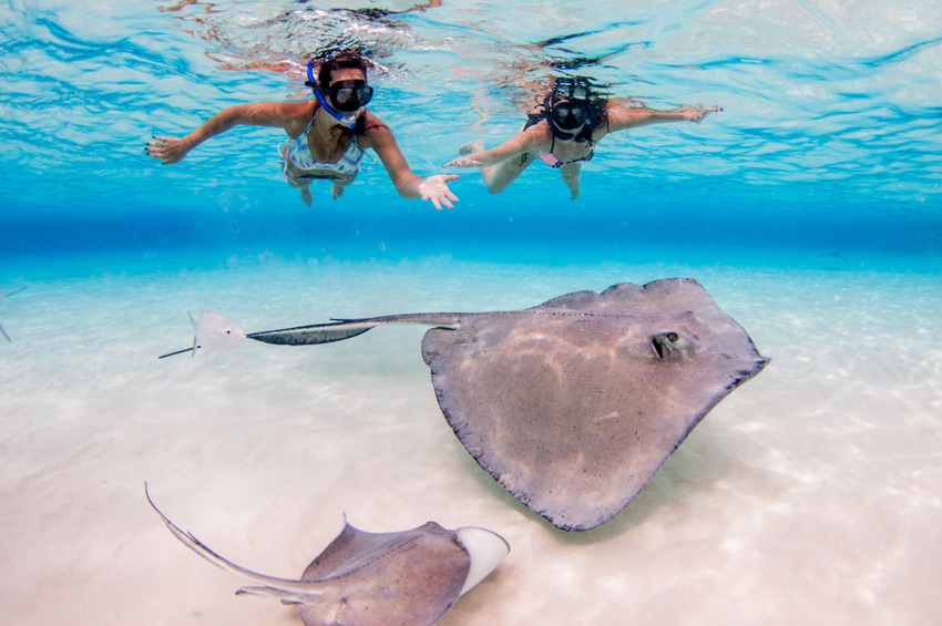 Cayman_island_adventure_active_family_holidays-Stingray-City-Sandbar,-Grand-Cayman