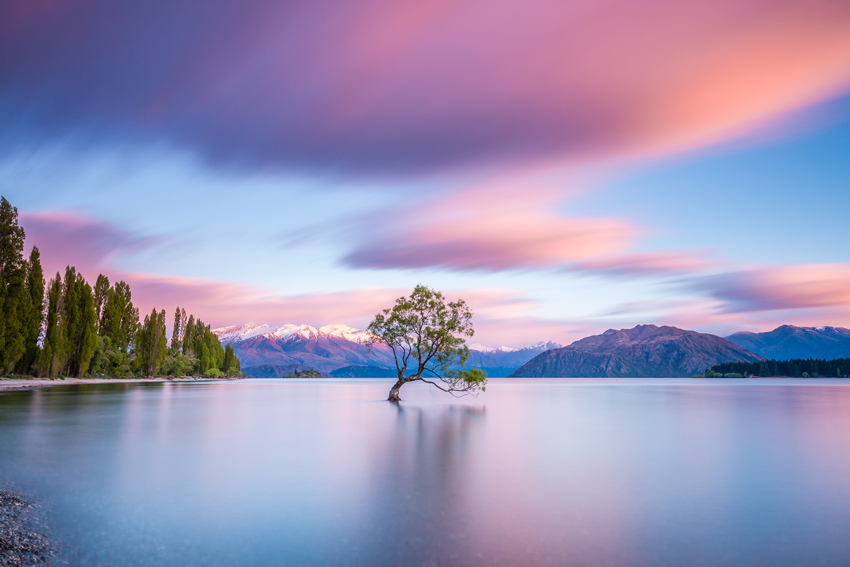 NEW-ZEALAND-BEST-THINGS-TO-DO-AND-SEE-Wanaka-Tree-at-sunrise