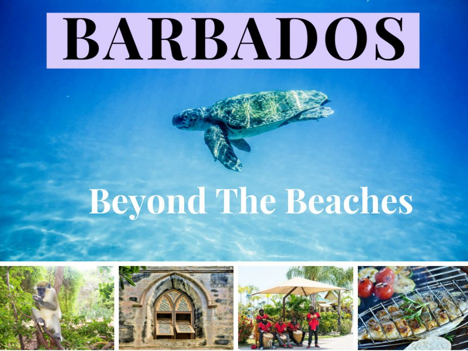 barbados-beyond-the-beaches-things-to-do