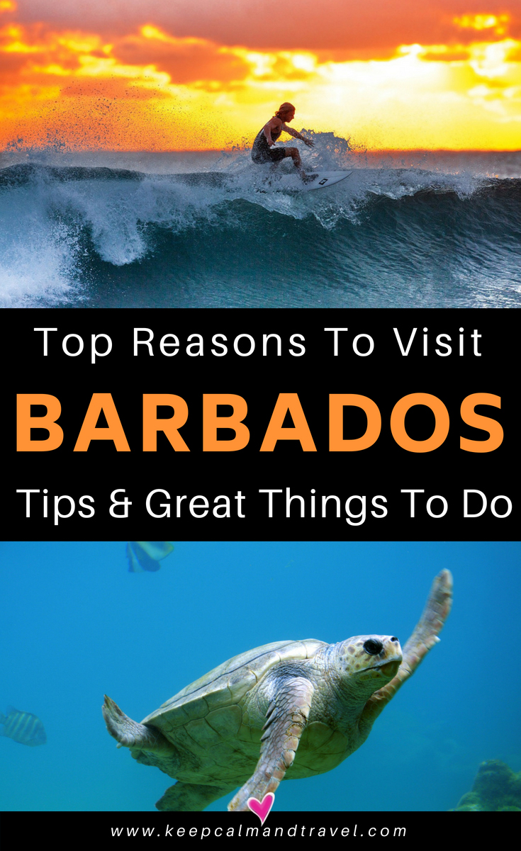 BARBADOS-CARIBBEAN-TOP-THINGS-TO-DO-TRAVEL-GUIDE-AND-TIPS