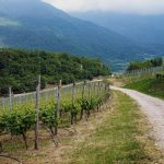 hiking-the dolomites-things-to-do-in-valle-dei-laghi-trentino