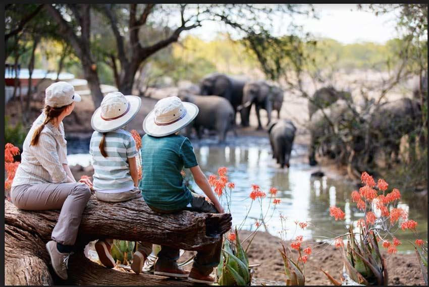 africa-familiy-friendly-safari-with-children