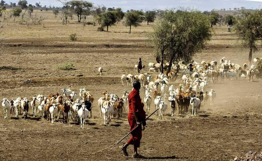 family-friendly-safari-holidays-africa-maasai